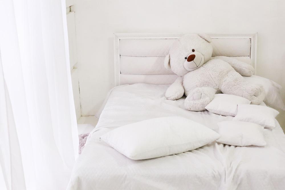 Millbrae mattress cleaning bedbugs
